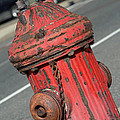 Fire Hydrant by Lisa Phillips