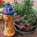 Fire Hydrant With Flowers by Jeff Gater