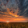 Fire In The Sky by Nebojsa Novakovic