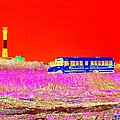Fire Island Life by Ed Weidman