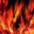 Fire by Jayant Kerai