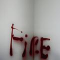 Fire by Margie Hurwich
