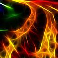 Fire Of Life by Fabian Cardon