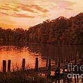 Fire On Lake Newport  by Janice Pariza