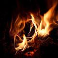 Fire Portal by Adam Long