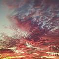 Fire Sky by Holly Martin