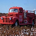 Fire Truck In The Cotton Field by Michael Thomas