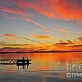 Firecracker Sunset by Terri Gostola