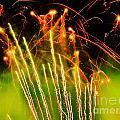 Firefly Fireworks by Heather White