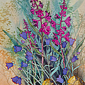 Fireweed And Bluebells by Teresa Ascone