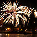 Firework Explosions by Susan Tinsley