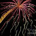 Fireworks 11 by Gallery Of Hope