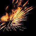 Fireworks 2 by Stephanie Kendall