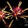 Fireworks 2014  12 by Wesley Farnsworth