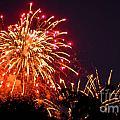 Fireworks 2014  4 by Wesley Farnsworth