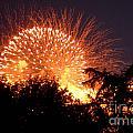 Fireworks 2014  5 by Wesley Farnsworth