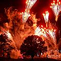 Fireworks At Epcot 1 by Tom Doud