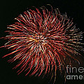 Fireworks At Night 5 by Jeelan Clark