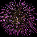 Fireworks Bursts Colors And Shapes 5 by SC Heffner