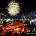 Fireworks By The Bay by Jenny Zhang