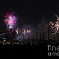 Fireworks Dallas Texas by Imagery by Charly