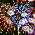 Fireworks Flower Abstract by Alice Gipson