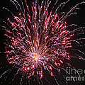Fireworks For All by Terry Weaver