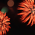 Fireworks by Kelly Howe