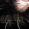Fireworks Light Trails 11 by Mary Bedy