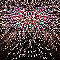 Fireworks Phoenix by Alice Gipson
