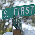 First And Park by Terri Thompson