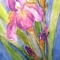 First Bloom by Sherry Harradence