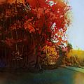 First Light by Kris Parins