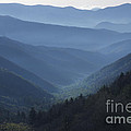 First Light On Clingman's Dome by Sandra Bronstein