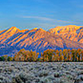 First Light On The Tetons Limited Edition Panorama by Greg Norrell