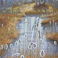 First Light Spring Cattails by Robert P Hedden