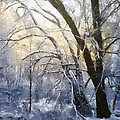 First Snow by Gun Legler