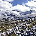 First Snow by Jeremy Rhoades