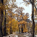 First Snow by Jim Romo