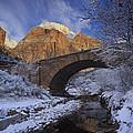 First Snow Pine Creek by Susan Rovira
