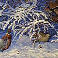 First Snow by Valentin Katrandzhiev
