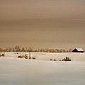 First Snow by William Renzulli