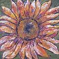 First Sunflower  by Jenny Frampton