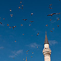 Firuz Aga Mosque Seagulls by Rick Piper Photography