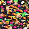 Fish And Fishes by Jessie J De La Portillo
