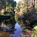 Fish Creek by Joseph Yarbrough