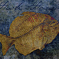 Fish Fossil by Sandra Selle Rodriguez