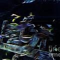 Fish In Aquarium by Doc Braham
