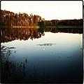 Fish Lake Evening by Sheri Nelson