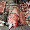 Fish Market by Tony Murtagh